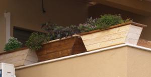 אדניות עץ קטנות למרפסת - הללויה הארומה שבעץ