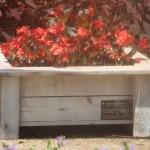 אדניות עץ - מאמרים ומידע