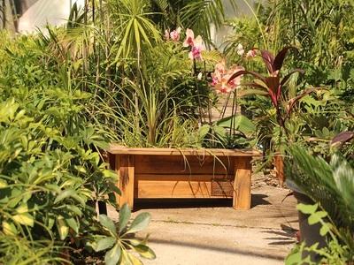אדנית קטנה לגינה מדגם 'איה' - הללויה הארומה שבעץ