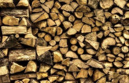 עצי הסקה המאוחסנים במחסן עצים